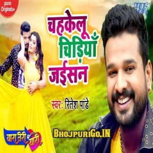 Chahkelu Chidiya Jaisan Mp3 Song